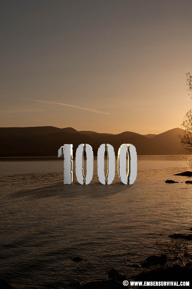 Ember Survival reaches 1000 likes on facebook!