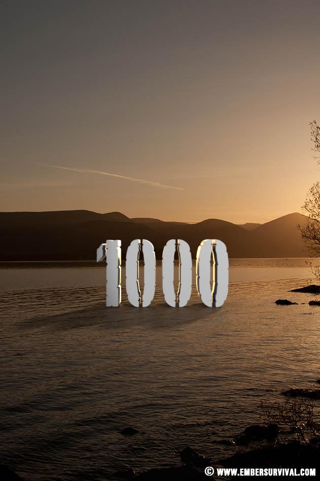 1000 likes facebook