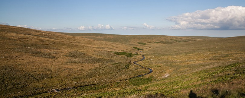 Ember_Survival_Dartmoor