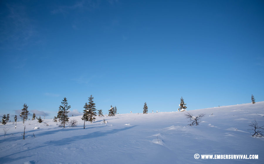 snowshoeing in Finnish Lapland