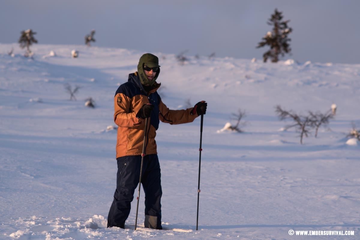 Hiker stands with two poles in a winter landscape