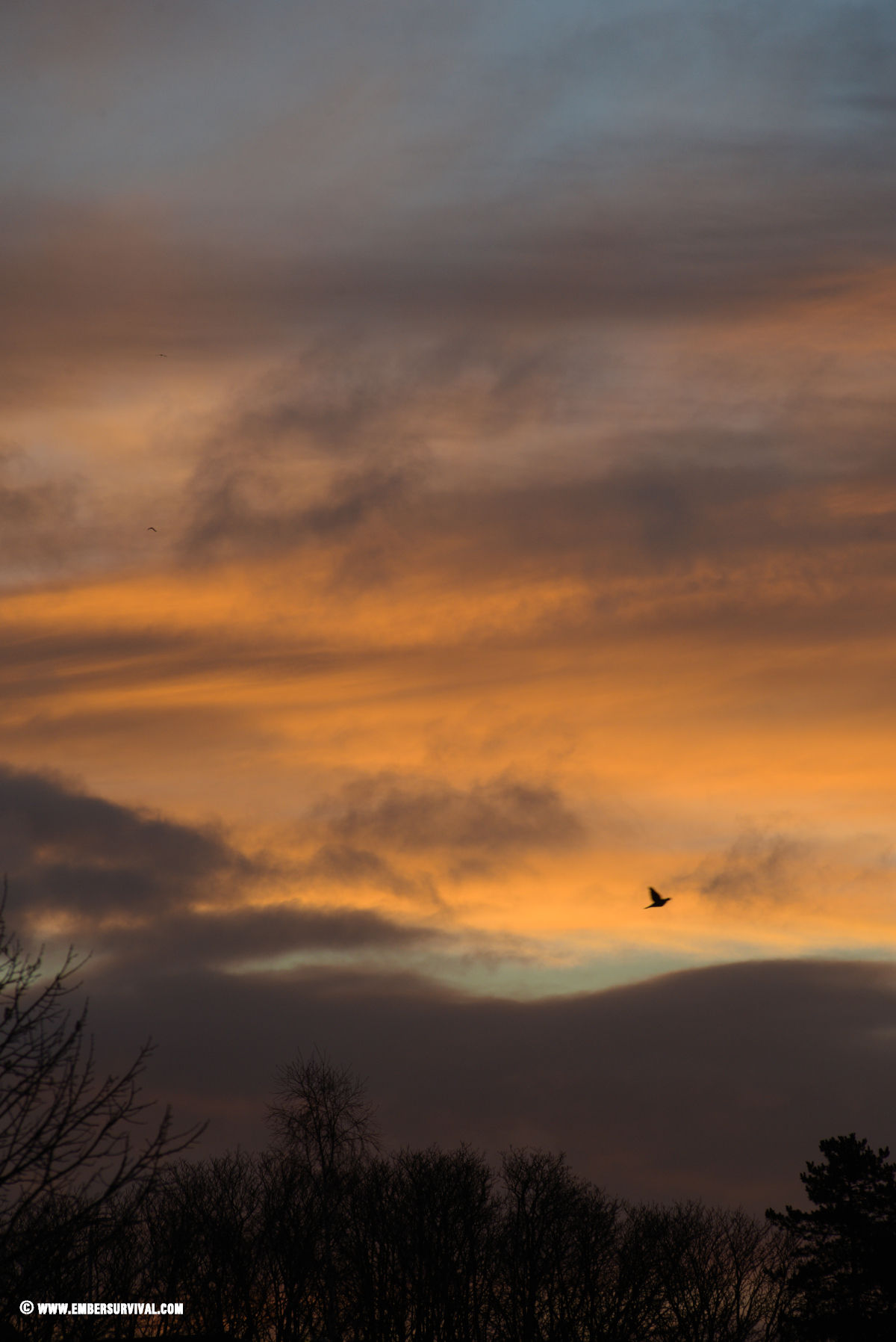 Lockdown sunset london freedom